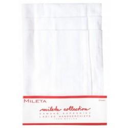 Ladies handkerchiefs GRETA 079-6-WH - 6pcs/polybag